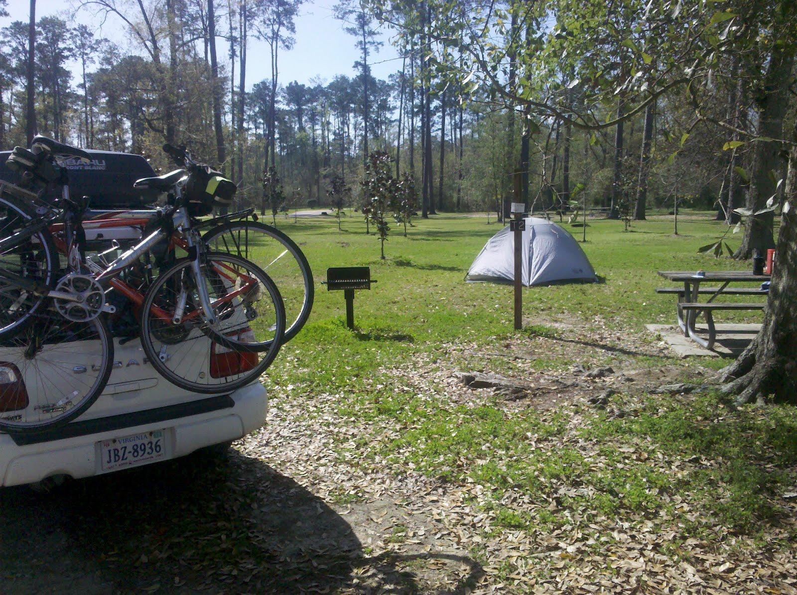 Louisiana Lingo – Living Wonderously