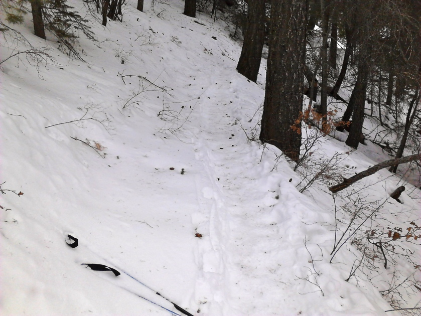 A long snowy section of trail that made us think it would be nice to have a toboggan for the trip down.