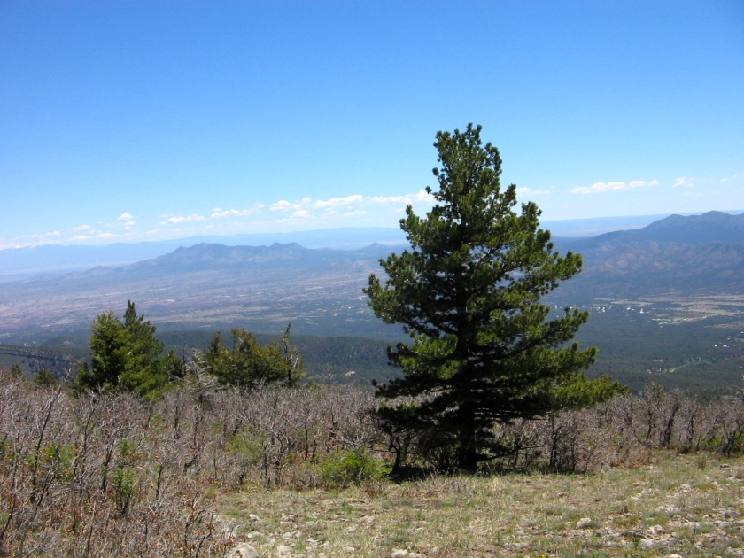 Yesterday's view from Sandia Crest, looking northeast.