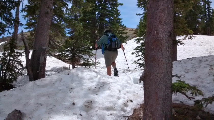 Almost to the point where the tree line and snowbanks end before the final ascent on the rocky slope to Deception Peak.