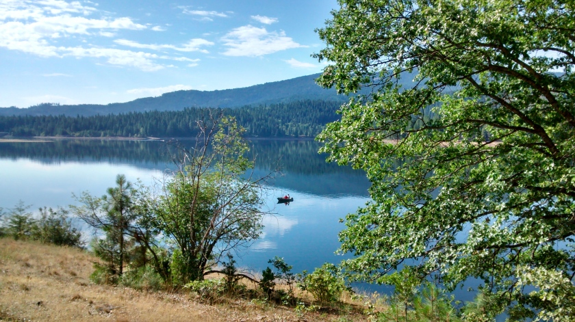 View across lake from Lake Siskiyou Trail.