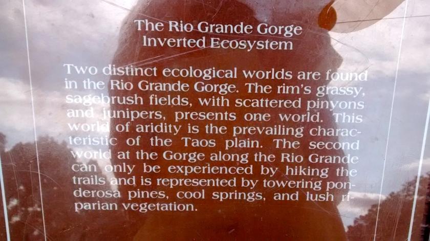 A Reverse Ecosystem