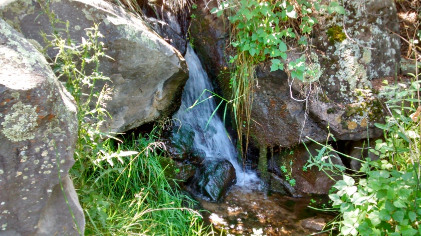 Little Arsenic Spring.