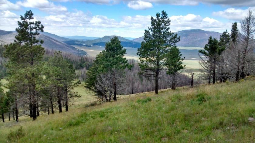 View east towards Los Alamos