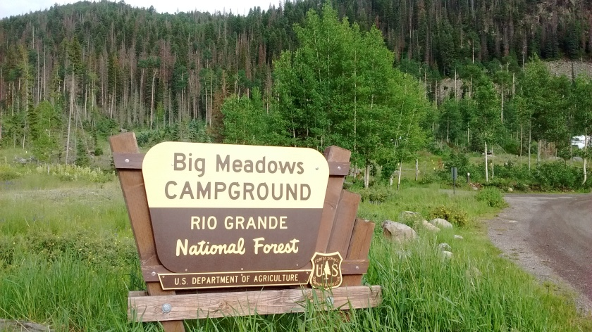 Big Meadows Campground is along the shore of Big Meadows Reservoir.  Spruce beetle infestation has killed many of the firs.