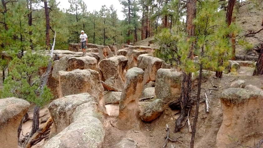 This place was a maze of eroded rocks you could walk through--petrified version of a corn maze.