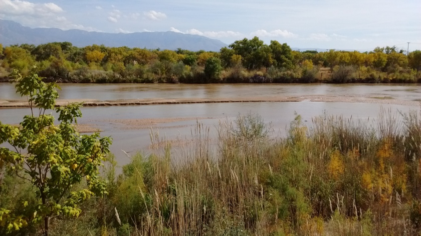 View of the Rio Grande we see when we cross at Paseo del Norte on the bike trail.