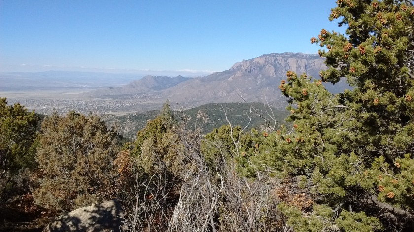 Looking at north end of Sandias from Whitewash Trail.