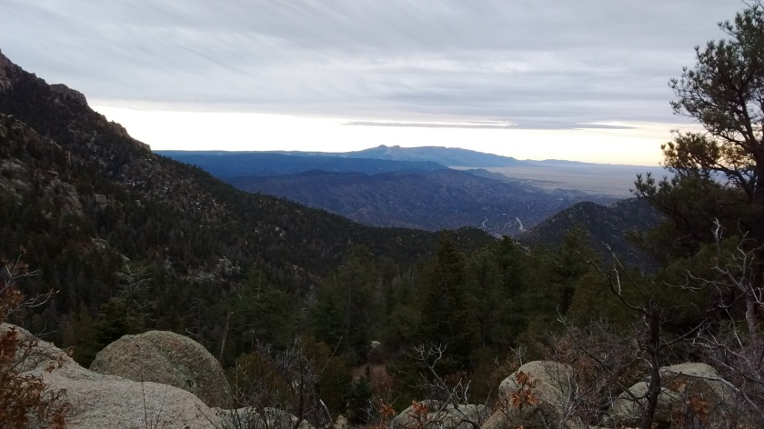 Looking south. Manzano Mountains in the distance.