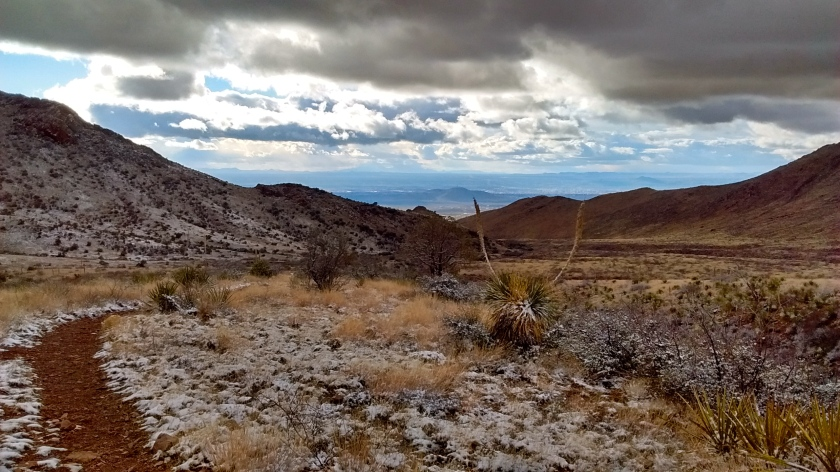 Looking west back towards Las Cruces.