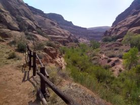 Hog Springs Trail south of Hanksville but no time on this trip for hiking.