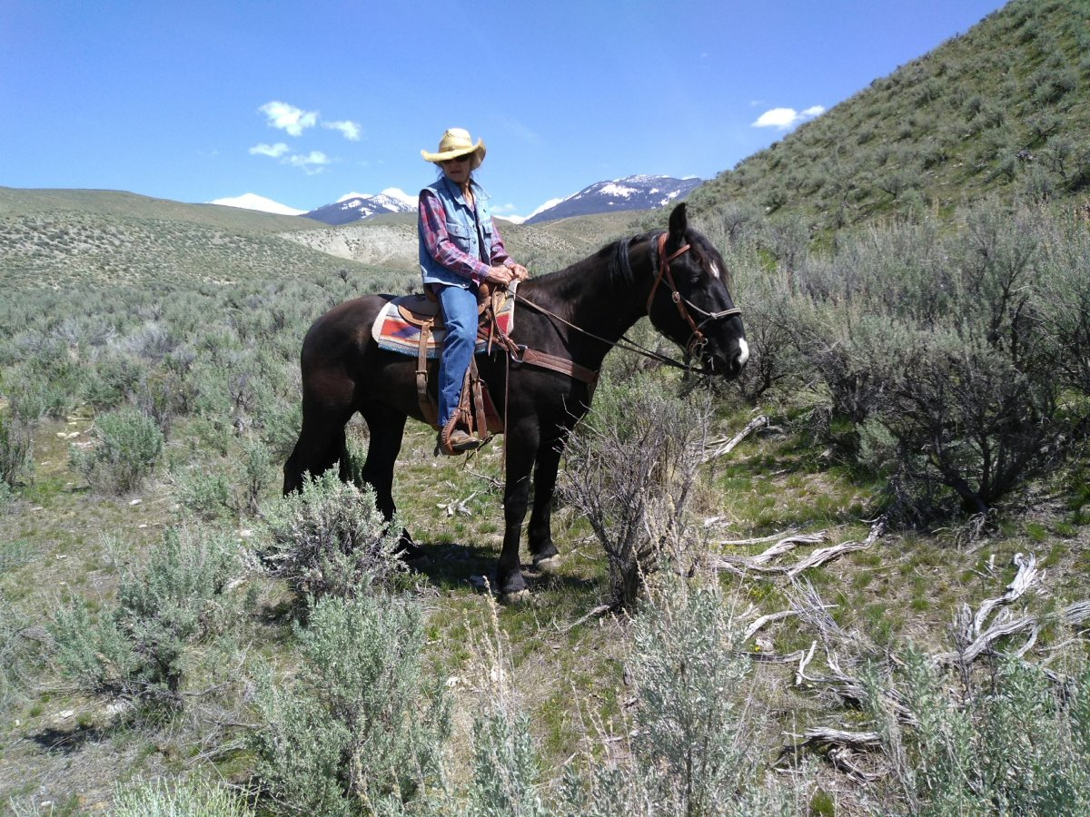 Another Idaho Horseback Adventure